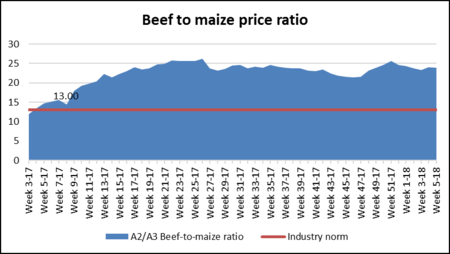 Beef To Maize